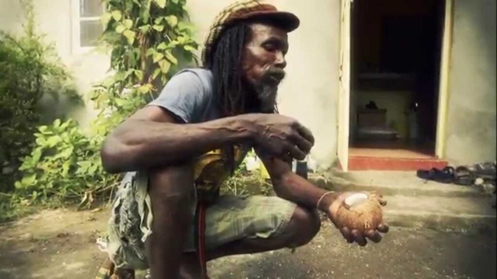Jamaican Organic Farming & Ital Cooking Tips From Portland, Jamaica [VIDEO] 1
