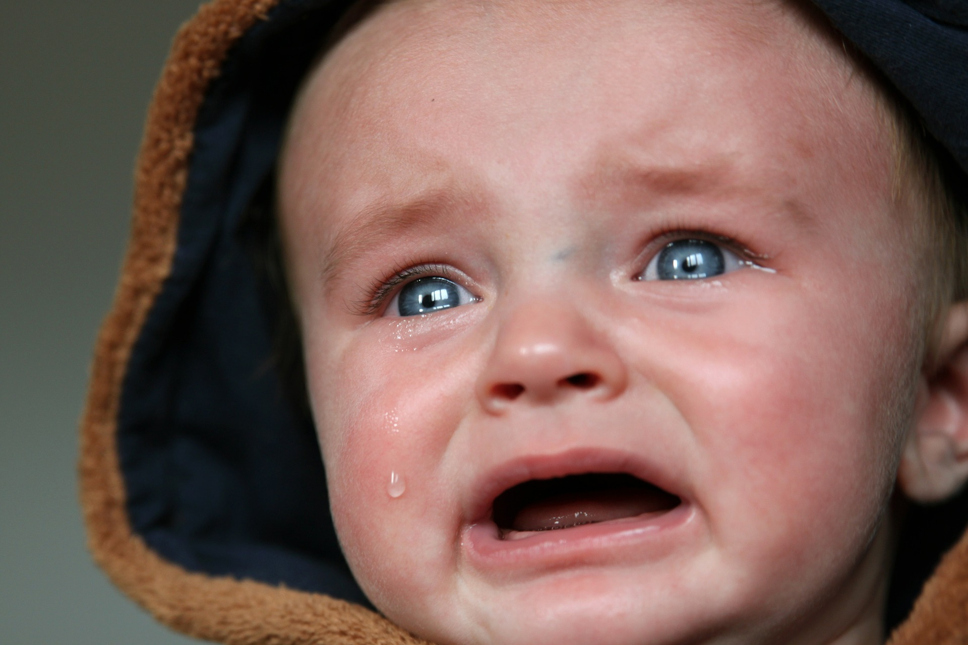 Funniest Expression of Babies That Made Me Feel Awww 6